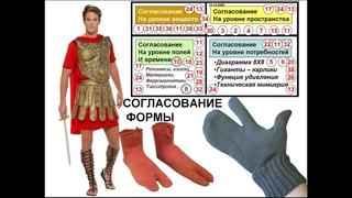 26 носки и согласование