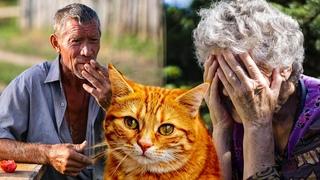 Рыжий кот помогал всей деревне, но то что произошло поменяло отношение к людям  этой бабушки.