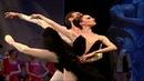 """Solisti baleta """"Labudovo jezero Koleno nijednom nije klecnulo Orbita kulture"""