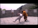 Shaolin Chin Na demonstration
