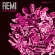 REMI, Sensible J - Too Much