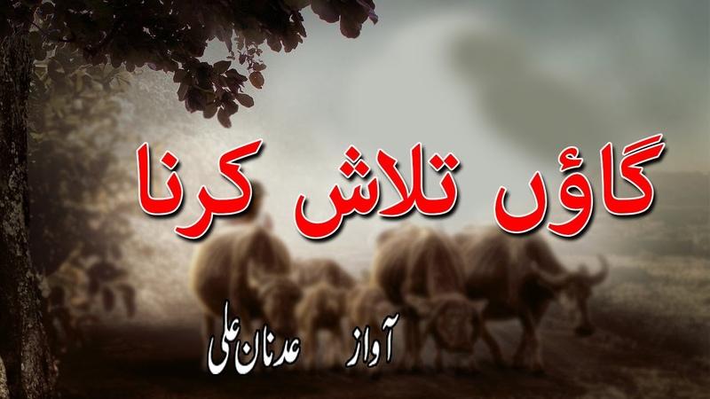 Best Poetry Suraj pay ghar banana aur chaon Talash karna by Adnan Ali