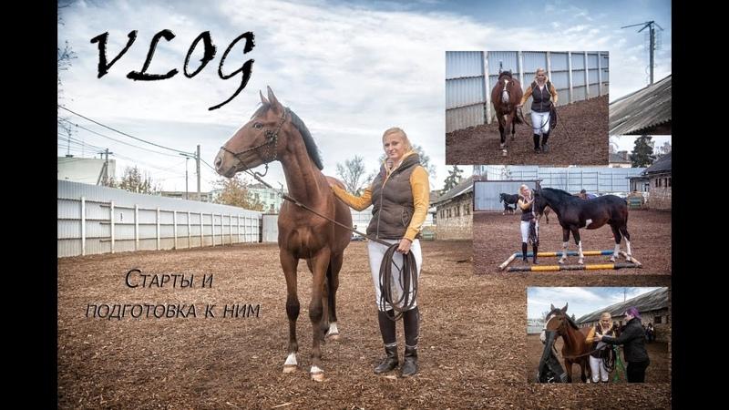VLOG о том как мы к соревнованиям готовились Или занятие с двумя лошадьми одновременно
