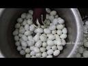 Yemekler yumurtali hindistan nefis yemek tarifleri nasıl yapılır