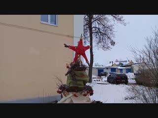 Ёлки в Дзержинске. Улица Клюквина
