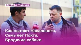 Как пытают Навального, Семь лет Локтя и бродячие собаки