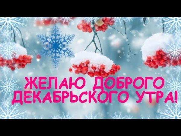 С ДОБРЫМ УТРОМ ДЕКАБРЯ! Желаю прекрасного декабрьского утра! видео открытка...