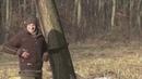 Охота на кабана Подборка удачных выстрелов Boar hunting A selection of successful shots