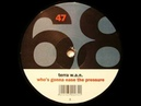 Terra W.A.N. Who's Gonna Ease The Pressure (Two Phunky People Remix)