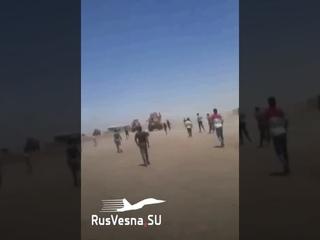 Срочно! Военных США забросали камнями и с позором прогнали в Сирии