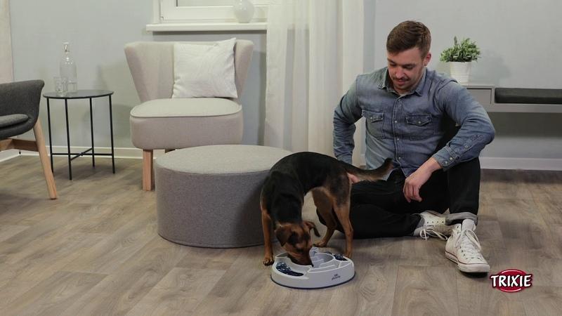 TRIXIE Heimtierbedarf Strategiespiel für Hunde und Katzen Slide Feed