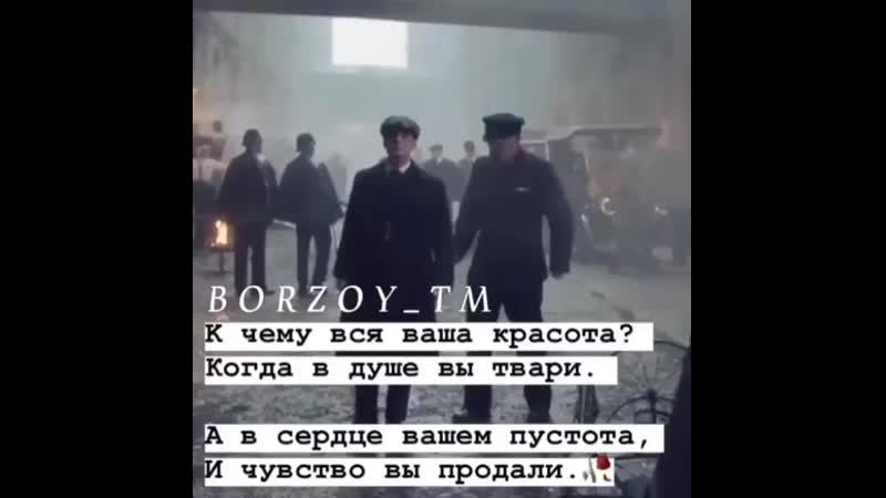 __borzye_720200221_022846_0.mp4