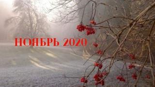 Экспресс Таро прогноз на Ноябрь 2020  для всех знаков Зодиака (Астрологический Оракул Симболон)