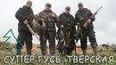 МНОГО ГУСЯ! Охота на гуся весной 2021 г. на поле Тверской области. Открытие охоты и другие дни.