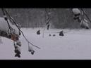 Такого ЧУДА на зимней рыбалке я не видел Как ТАК? Природа удивляет!