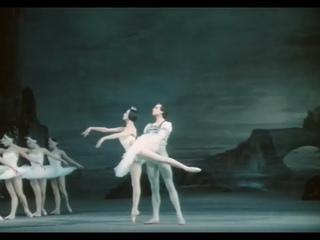 "P. I. Tchaikovsky ""Swan Lake"". Bolshoi theater of the USSR, 1983."