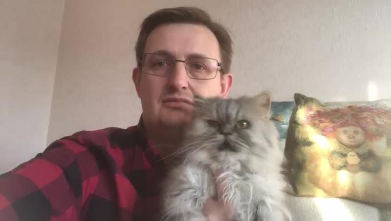 mimer.ru - Ответ ветеринара «Кошка метит углы после стерилизации»