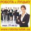 Robota Lutsk