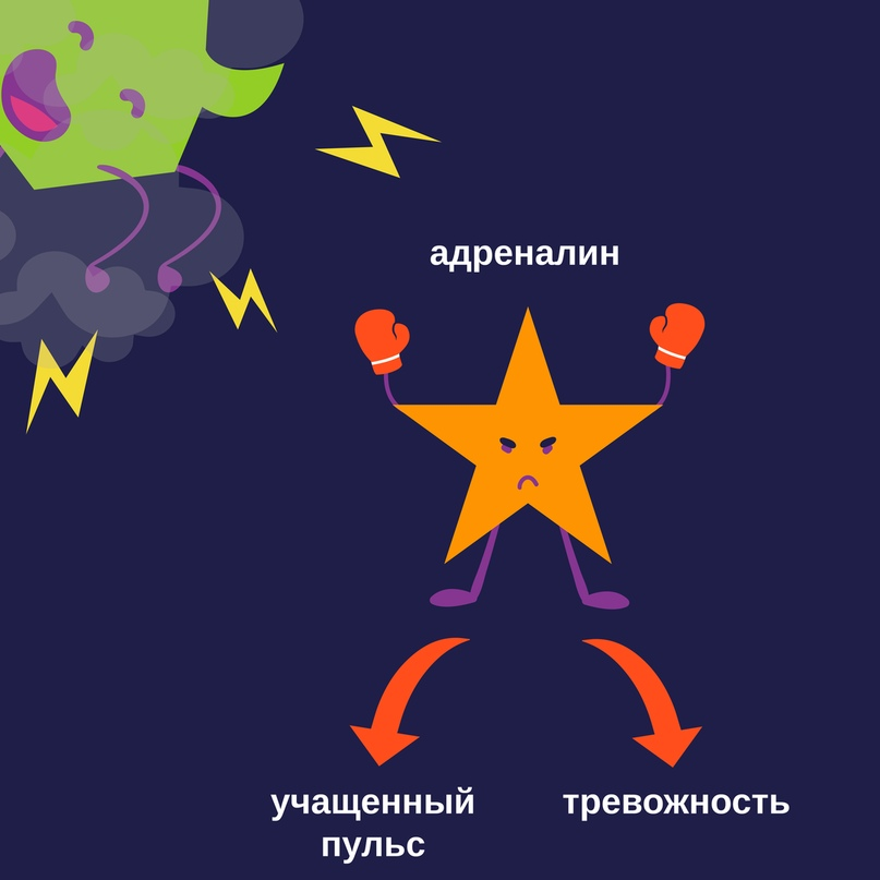 Никотин и мозг, изображение №4