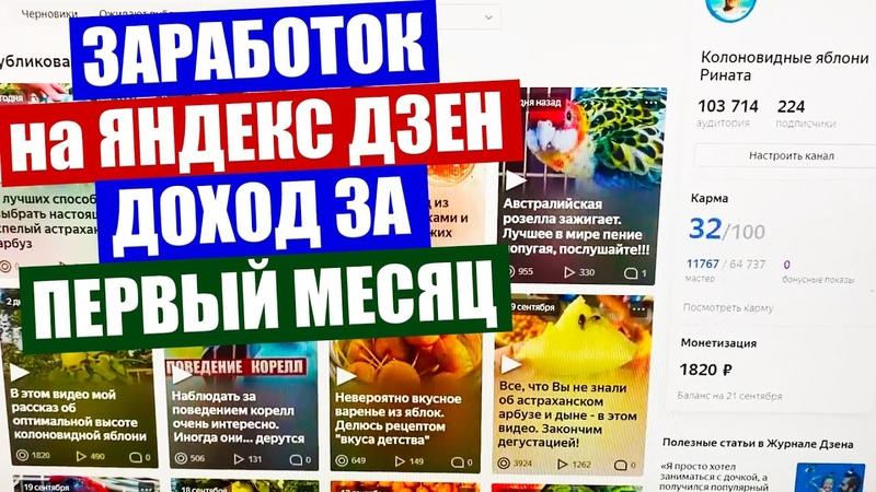 Заработок на Яндекс Дзен Сколько я заработал за первый месяц на Яндекс Дзен