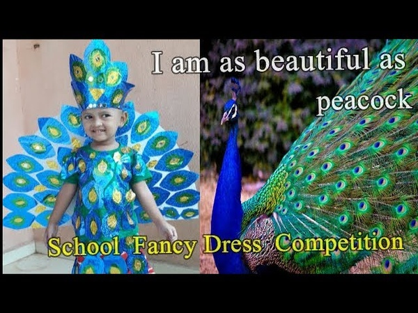 School Fancy Dress Competition DIY PEACOCK COSTUME SWEET OJAL
