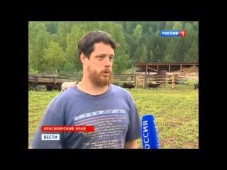 Русский производитель сыра
