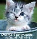 Личный фотоальбом Эльзочки Уметбаевой