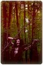 Личный фотоальбом Анастасии Морозовой