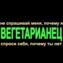 Фотоальбом Елены Зябкиной