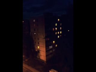 Палочник. Ульяновск, пр. Туполева, .