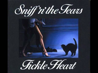 Sniff 'n' the Tears Driver's seat 12'' version