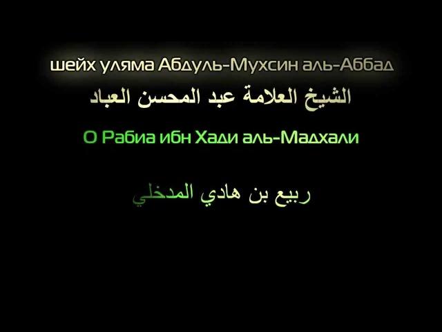 Шейх Абдуль-Мухсин аль-Аббад - про Рабиа аль-Мадхали.