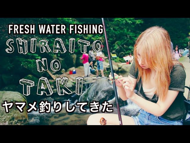 Fishing At A Waterfall in Itoshima 糸島の白糸の滝でヤマメ釣り!