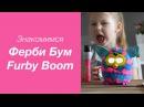 Знакомимся с Фёрби Бум | Furby Boom