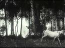 Сын полка 1946 - Classic - Retro - HD Full Online