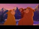 Братец Медвежонок все серии подряд часть (1)