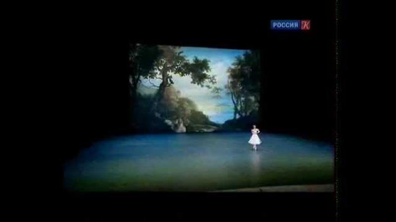 Kremlin Gala. Звёзды балета XXI века (2014)
