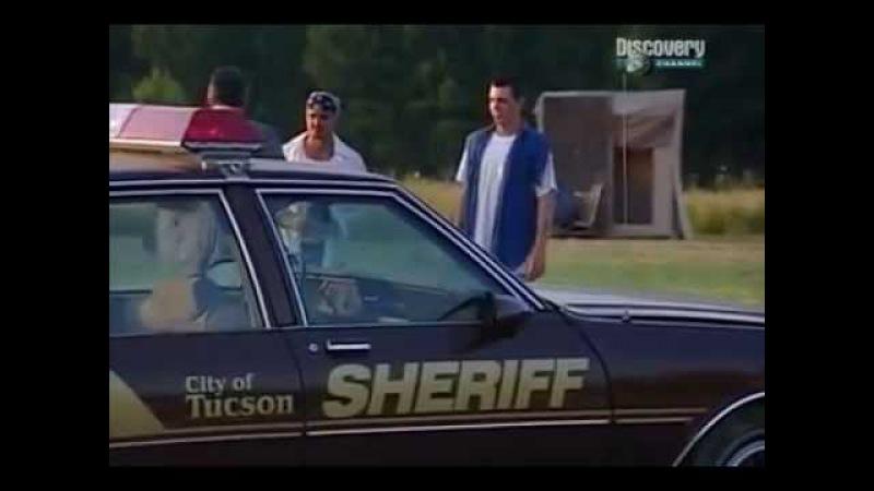 Discovery Архивы ФБР Хищник