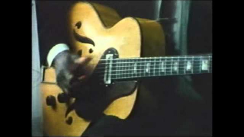 Chicago Blues Documentary (1972)