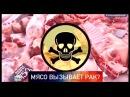 Обработанное красное мясо это страшный канцероген провоцирующий рак