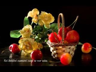 Oameni...(Nikos Ignatiadis - I Love You)
