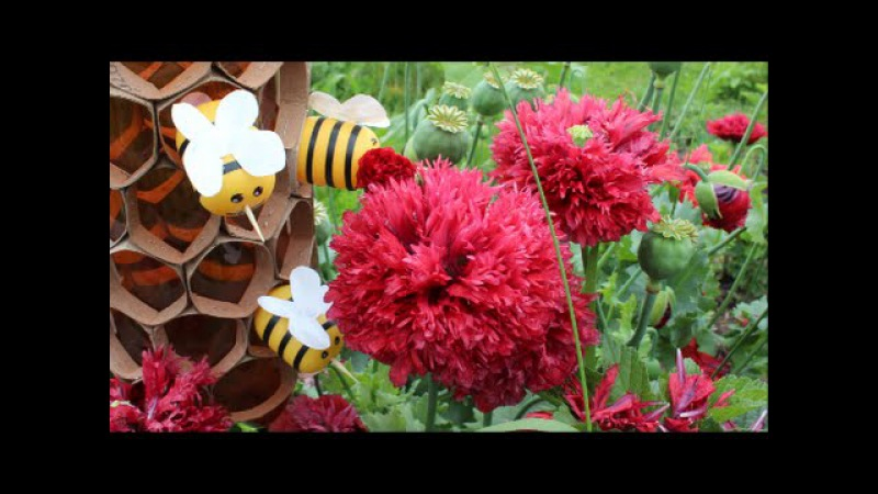 Поделки Своими Руками: Пчелы в Сотах Из Пластиковой Бутылки