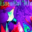 Личный фотоальбом Nocoast Orchestra