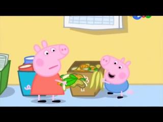 Свинка Пеппа 3 Сезон 07 Компост - развивающие мультфильмы для детей