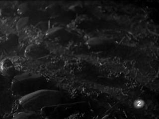 Las aguas bajan negras 1948 esp