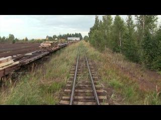 Narrow gauge railway line in Lavassaare
