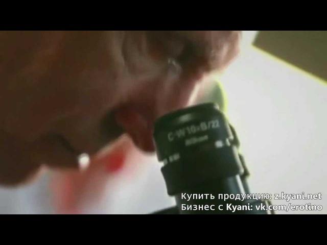 Эффект и действие Kyani Каяни Оксид азота Каяни