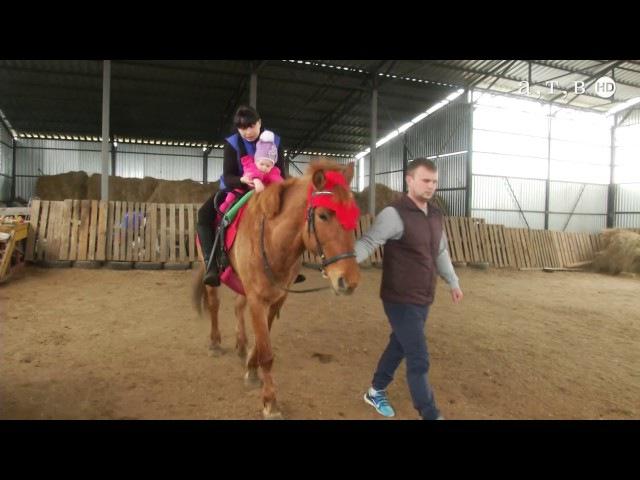 Лошадь лекарь души и тела