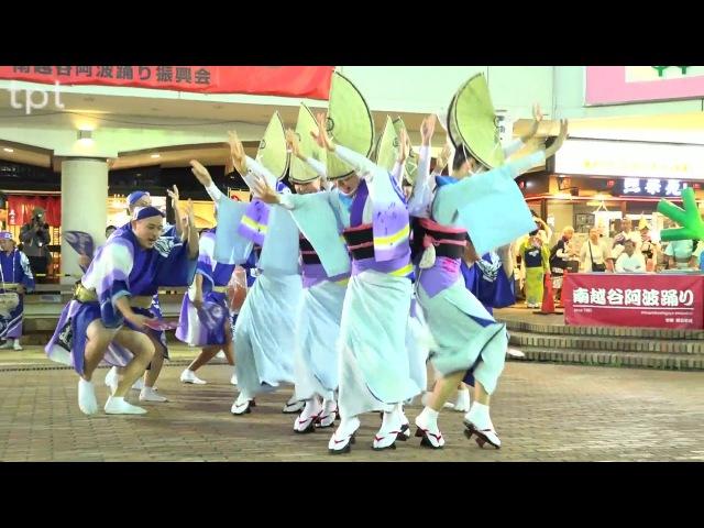 нежный цвет湘南なぎさ連 南越谷阿波踊り2017 組踊り会場