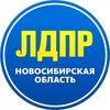 ЛДПР Новосибирская область